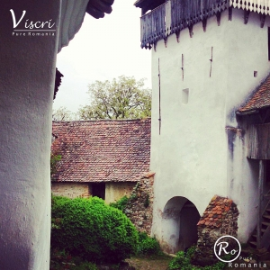 Viscri, Transylvania, Fortified Churches, The Village, Pure Romania (51)